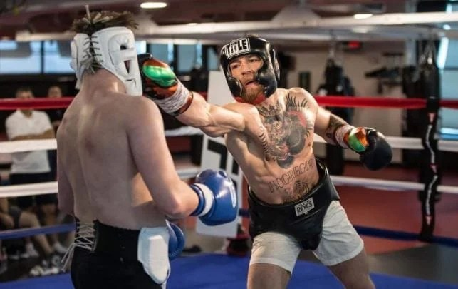 Conor McGregor Posts New Boxing Sparring Photos